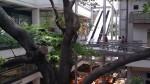 Oveido Mall